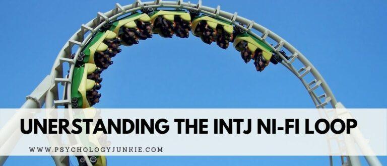 The INTJ Ni-Fi Loop