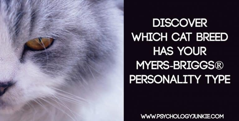 Which Cat Breed Fits Your Myers-Briggs® Personality Type
