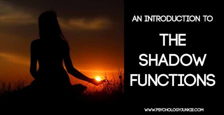 An Introduction to the Shadow Functions