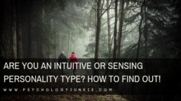 Do you use #sensing or #intuition? Find out which kind of personality type you are! #Personality #personalitytype #MBTI #Myersbriggs #INFJ #INTJ #INFP #INTP #ENFP #ENTP #ENFJ #ENTJ #ISTJ #ISFJ