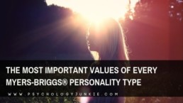 Find out what really matters to each of the Myers-Briggs #personality types. #MBTI #INFJ #INTJ #INFP #INTP