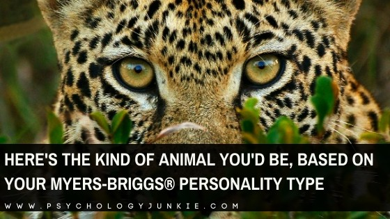 Discover which animal best suits your Myers-Briggs personality type. #Personality #MBTI #INFJ #INTJ #INFP #INTP #ENFP
