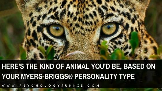 INTP personality Archives - Psychology Junkie