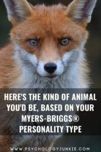 Discover which animal best matches your Myers-Briggs personality type. #MBTI #INFJ #INTJ #INFP #Personality