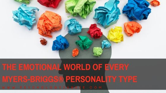 An in-depth look at the emotional world of each Myers-Briggs personality type. #MBTI #Personality #INFJ #INTJ #INFP #INTP