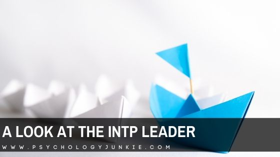 A Look At The INTP Leader