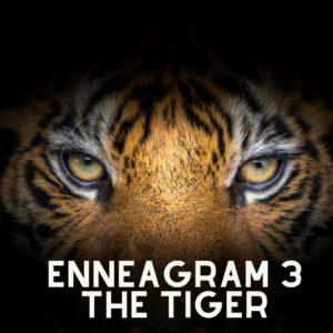 enneagram 3 tiger