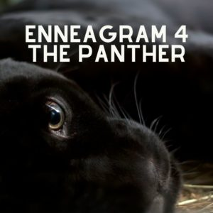 enneagram 4 panther