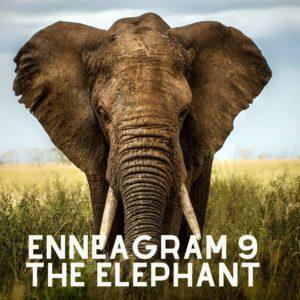 enneagram 9 elephant