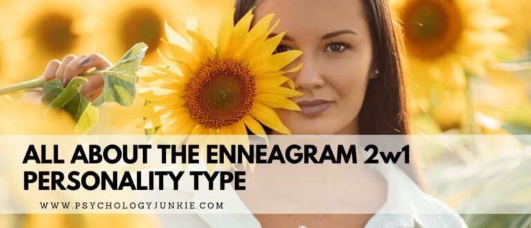 All About the Enneagram 2w1 Type